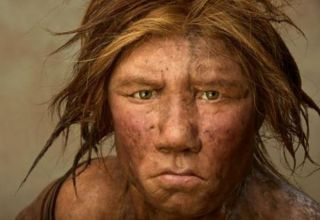 femme-de-neanderthal-portrait_921_w620